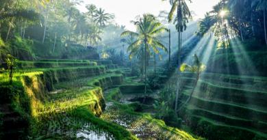 indonesia bali hotels